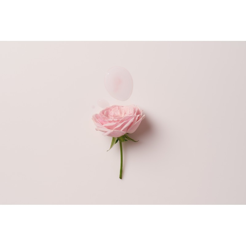 FALLING INTO THE ROSE MIST